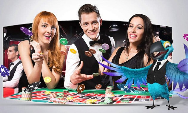 live-dealer-game-karamba